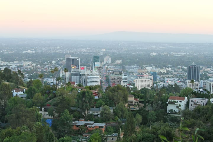 Views of downtown Hollywood from room and deck areas