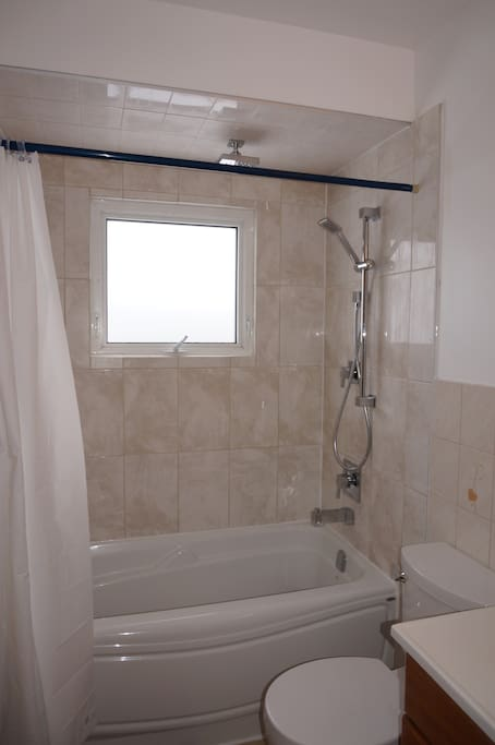 New tub, shower and toilet in bathroom