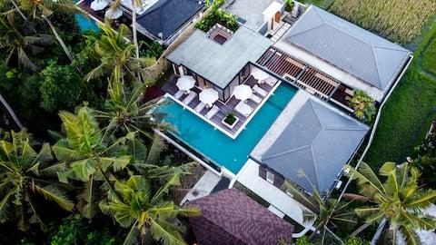 New! 5 Bdr Villa w/ pool and lush jungle view