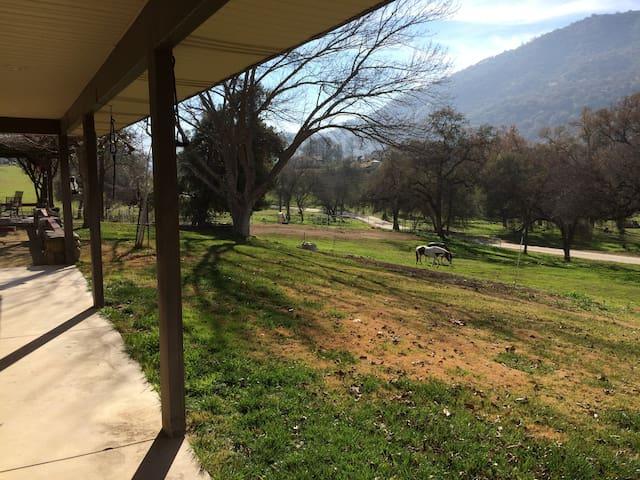 Riata Ranch House Downstairs Room-Horseback Riding