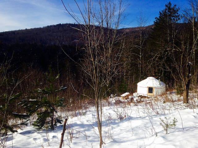 4 Season Lower Yurt Stay on VT Homestead