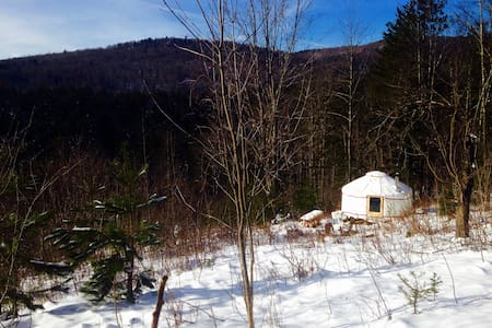 4 Season Lower Yurt Stay on VT Small Farm - Randolph - Yurt