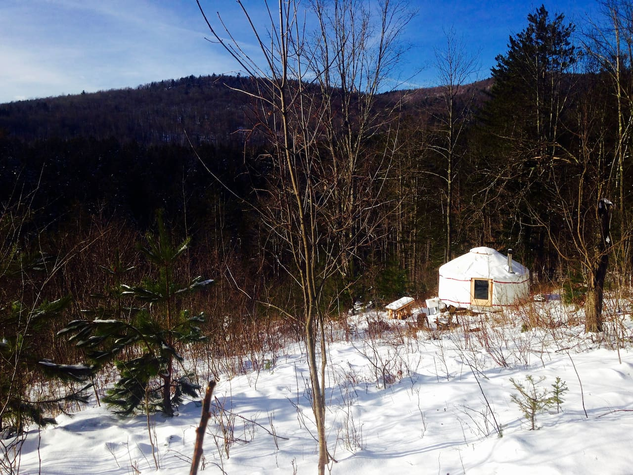 Winter is a beautiful yurt experience