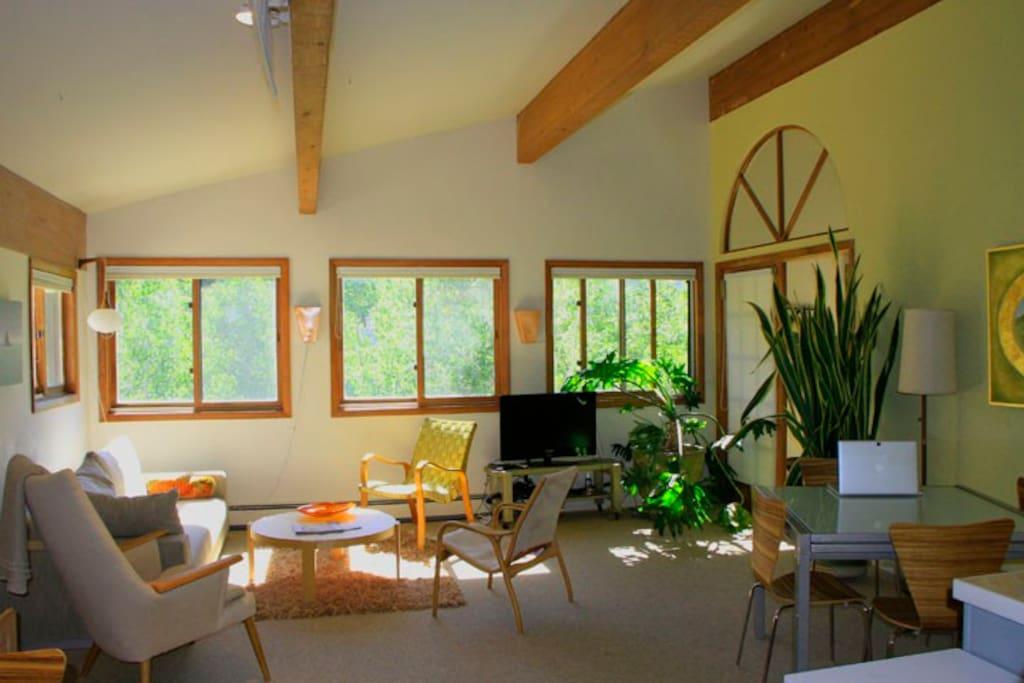 Living room in summer is heaven in the Aspen Trees!
