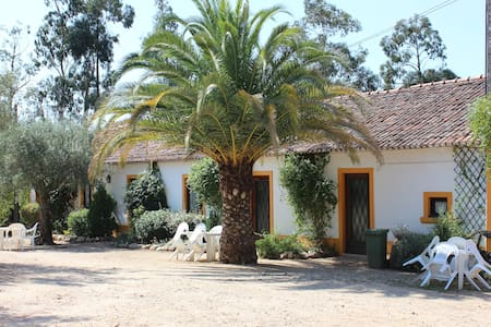 Beautiful house in a serene farm - Constância