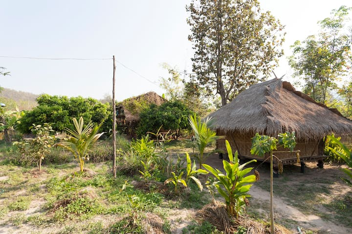 Buti's Farm Homestay Commune Deluxe - doi saket - House