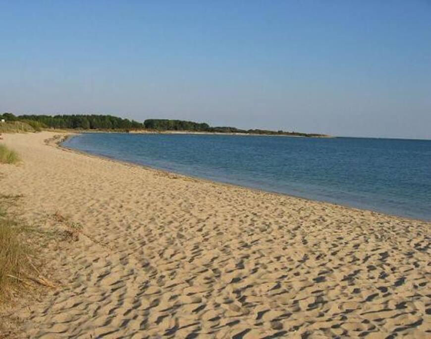Plage / Beach - 100 m (marée haute/high tide)
