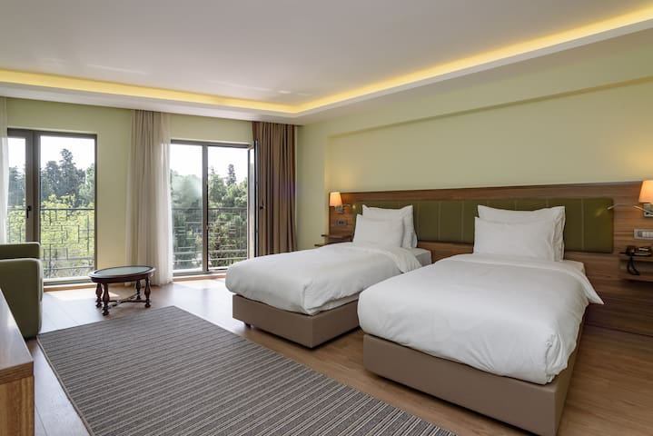 Delux Room At the heart of Istanbul (Twin/Double)