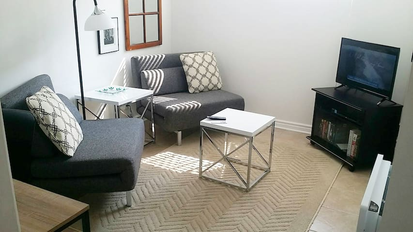One bedroom apt. Downtown. Parking/Wifi/TV/Netflix