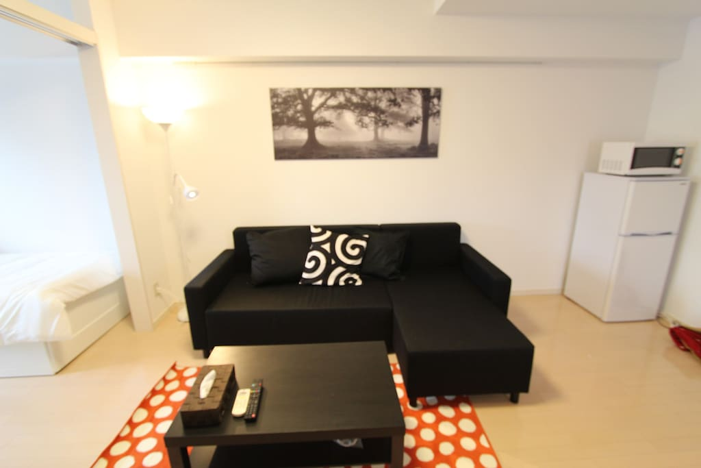 Another look at the living room and the sofa bed