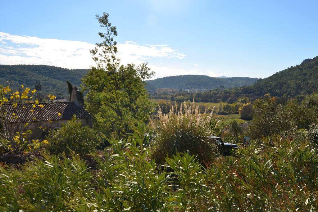 Vue sur le village et les vignes