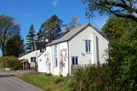 Golden Square Cottage - Devon