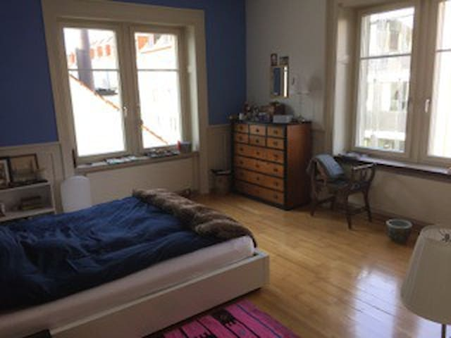 Big and sunny room in the heart of Zurich - Curych - Byt
