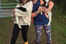 Lambs every year and guests love a snuggle.