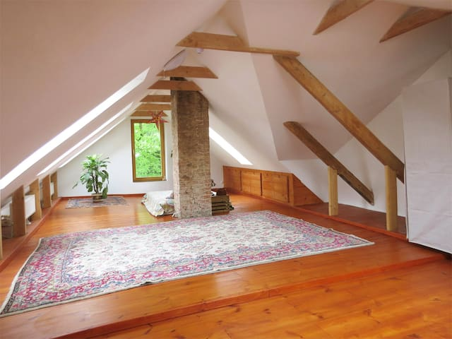Stylish LOFT in city center - LIVE, WORK, RELAX