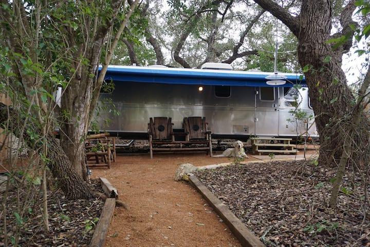 Hudson Bend Ranch  - Amaryllis