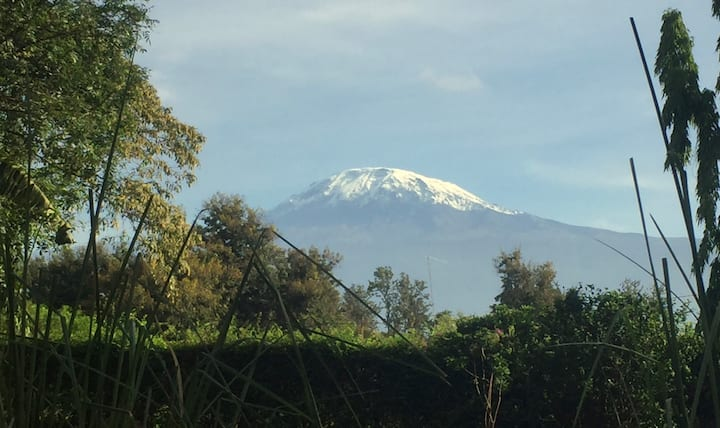 More Than A Drop B&B 1 - Kili view