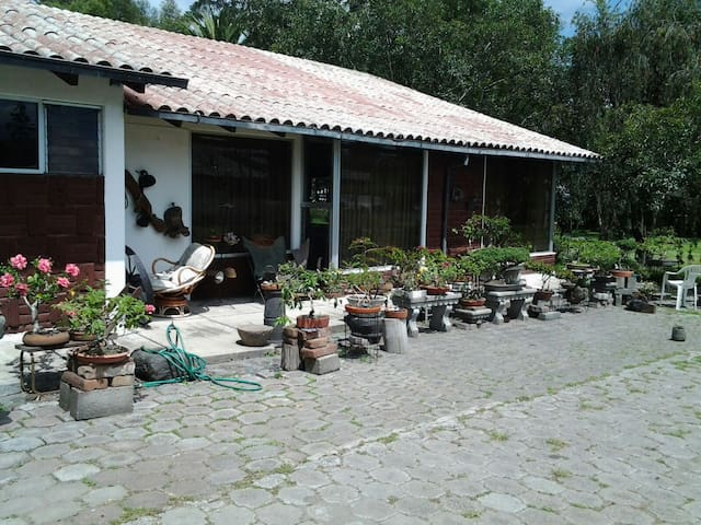 Double Room with private bathdroom - Quito - Bed & Breakfast