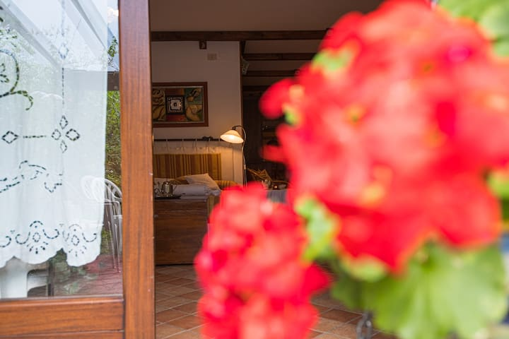 Private garden in luxury home/villa