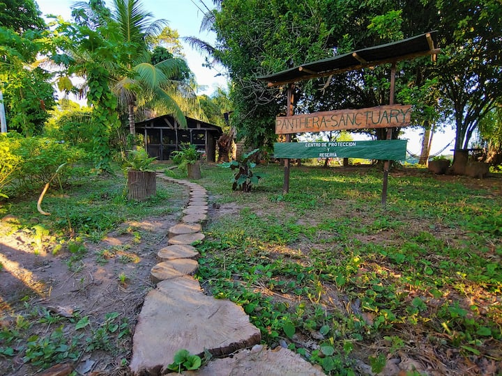 Guest rooms on Protected Amazon Rainforest Reserve