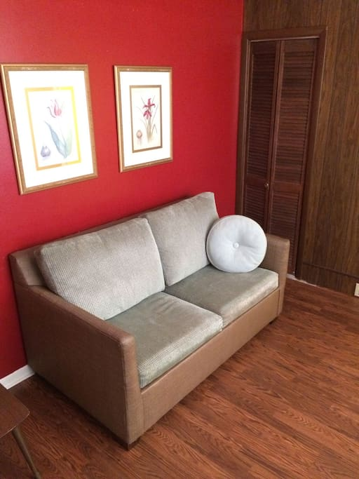 Living Room Full Pull out Sofa Bed