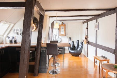 Charming apartment in the heart of Copenhagen - Copenhagen