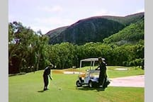 Many local golf clubs