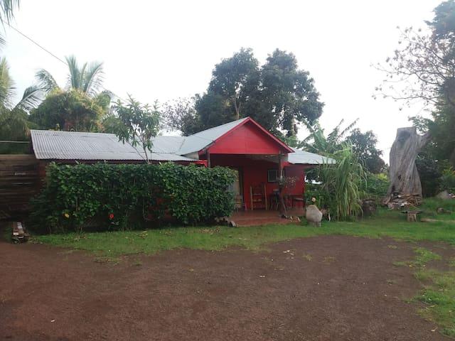 Here Taina Pate Mea Mea Habitación Motu Nui