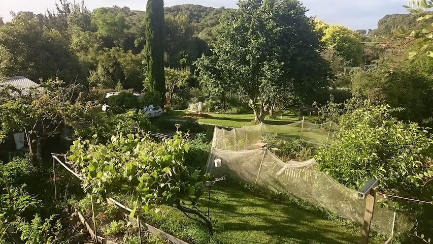 Omarama Oasis - Permaculture Glamping