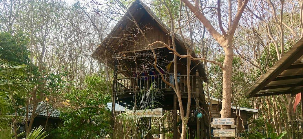 Noina's Mystic Mountain Hut