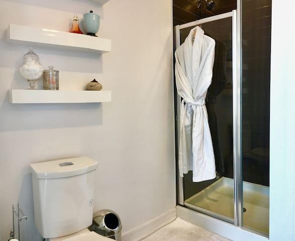 Washroom and stand shower