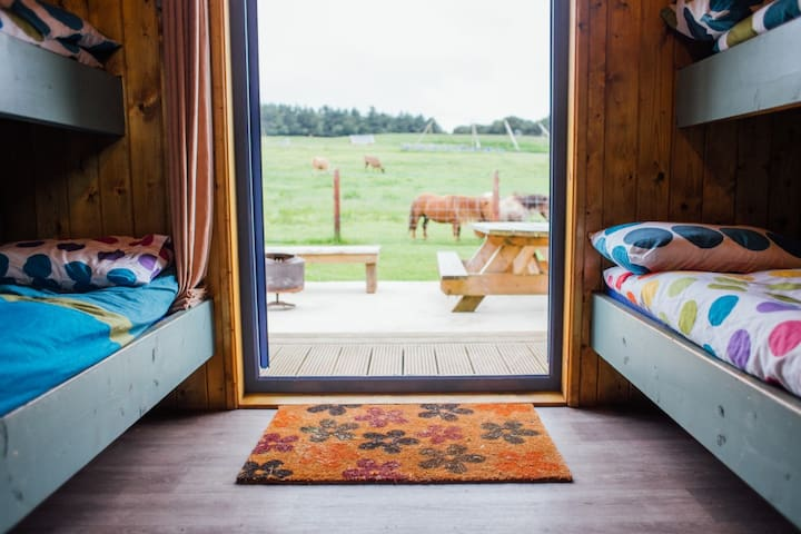 The Jungle Glamping Pods