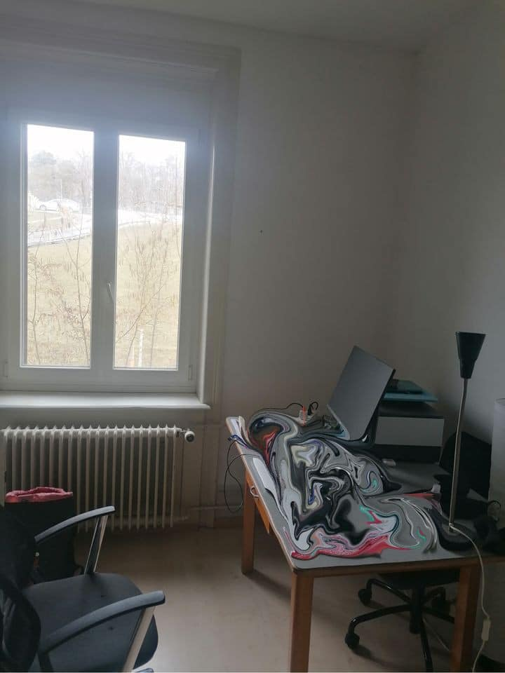 Furnished room in shared flat near Oerlikon