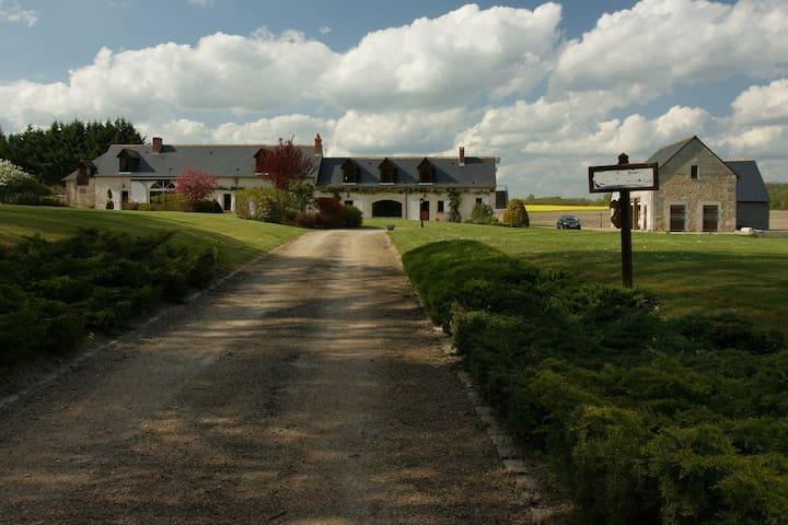 Vue depuis le portail d'entrée de la propriété / View from the entrance of the estate.