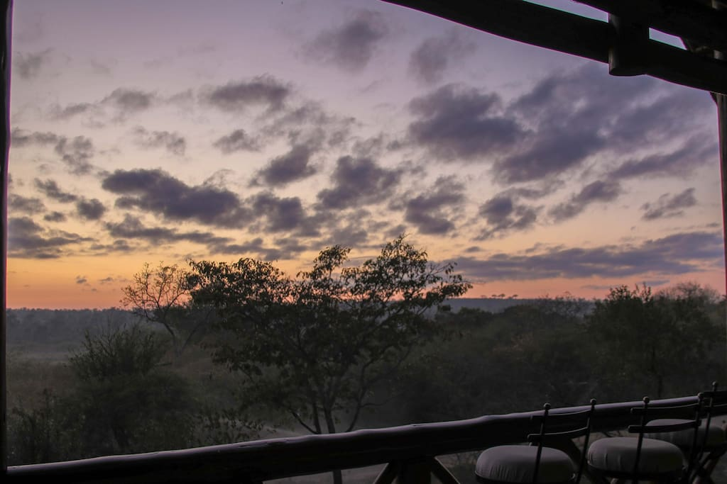 View over Kruger National Park