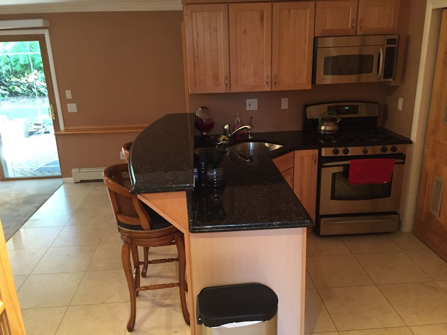 Modern Kitchen with an island, gas stove, microwave, refrigerator and walkout exit to patio.