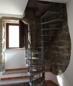 Monolocale tipico  in granito - Tempio Pausania - Apartment - 2