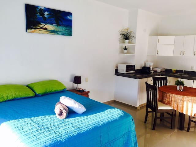Suite for your vacations with car to rent