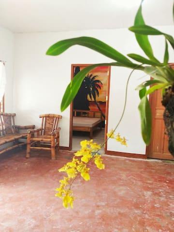 PBNHS Guest Room