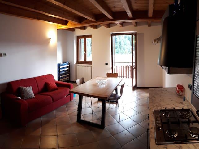 Appartamento Ponte via Alpini