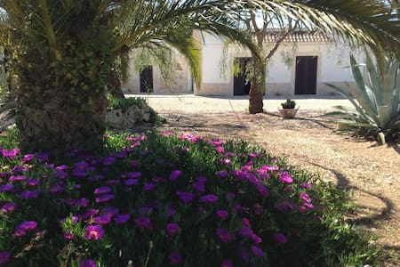 Beautiful double room in Masseria - Metropolitan City of Bari - Bed & Breakfast