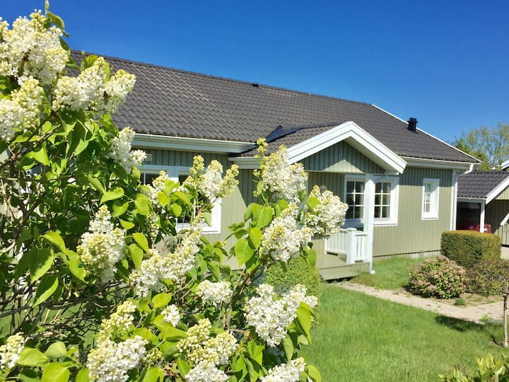 Charming summerhouse 500 meters from sandy beach