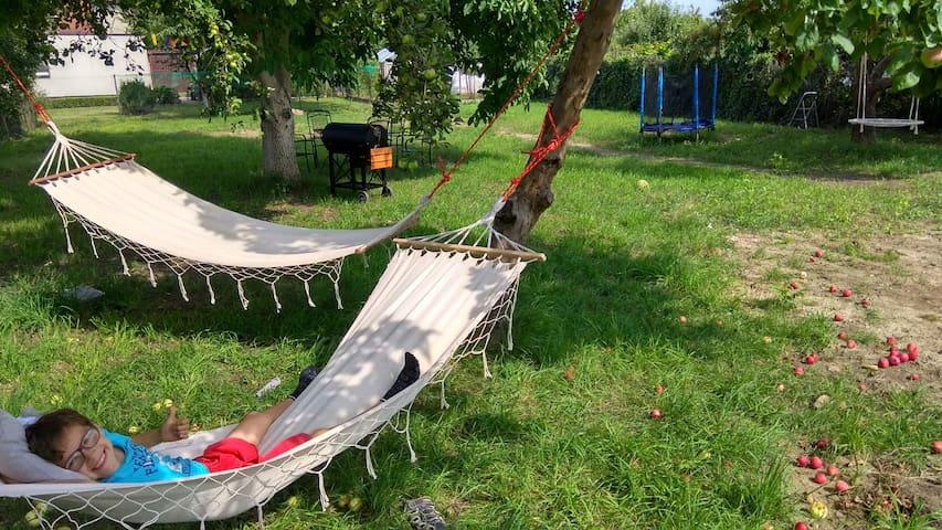 Żuławy Wiślane,Willa Wanda, duży ogród z hot tube