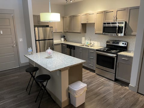 Beautiful Luxury Suite! Downtown! Free Parking!