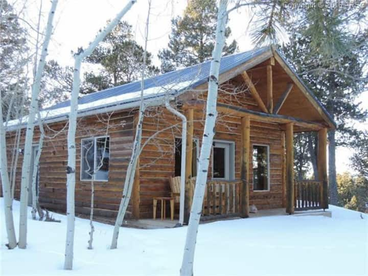 Log Cabin in the Mountains of Woodland Park, co
