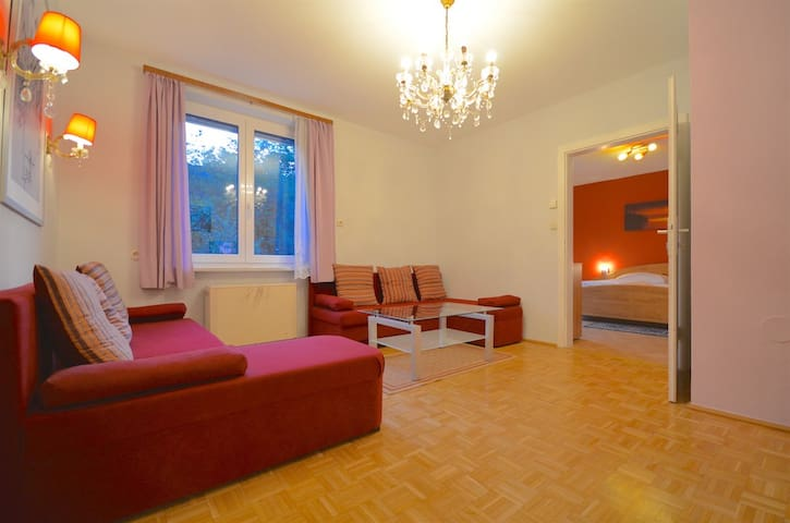 Spacious 2 bedroom appt in Zell-am-See town center