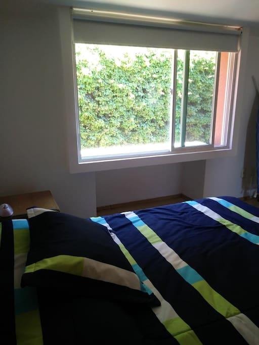 bonita vista verde desde la ventan