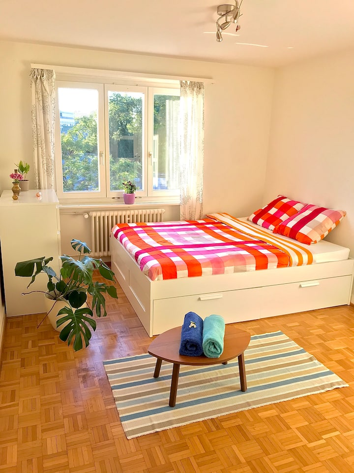 Cozy, central room at the heart of Zurich city!