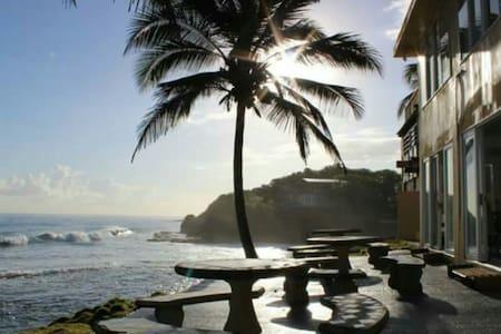 Heaven Awaits - Ocean Front - ドラド