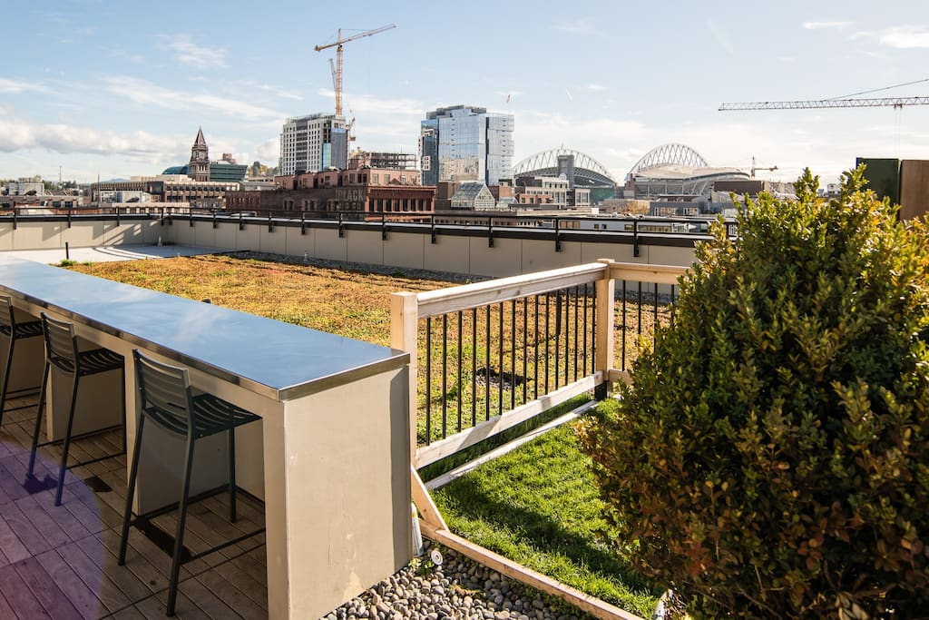 1 Bedroom Upscale Apartment In Downtown Seattle Apartments For Rent In Seattle Washington